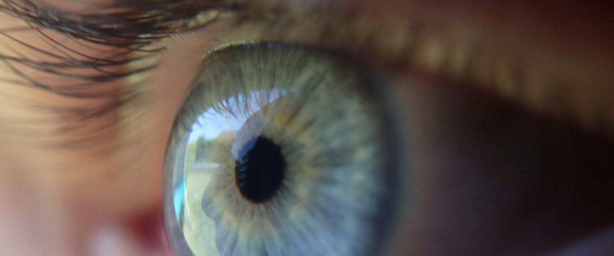 eye-369557